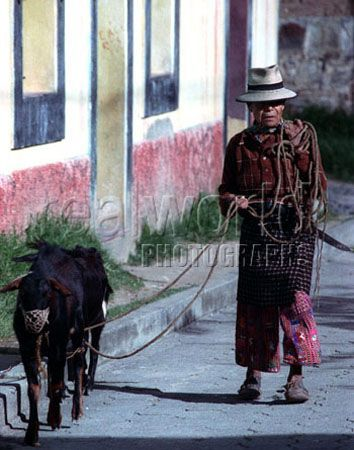 A Guatemalan man dressed in traditional clothing walks a goat in Solola,located in the highlands 84 miles from Guatemala City, Guatemala, Central America.